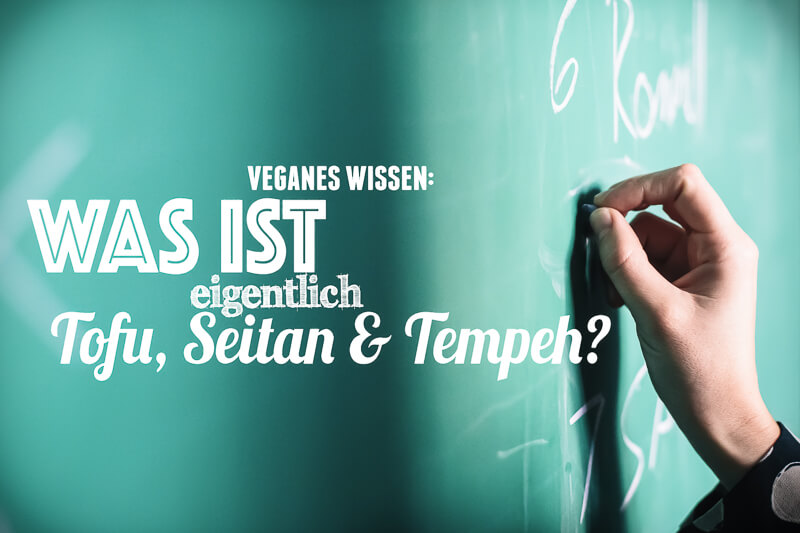 veganes-wissen-tofu-seitan-tempeh
